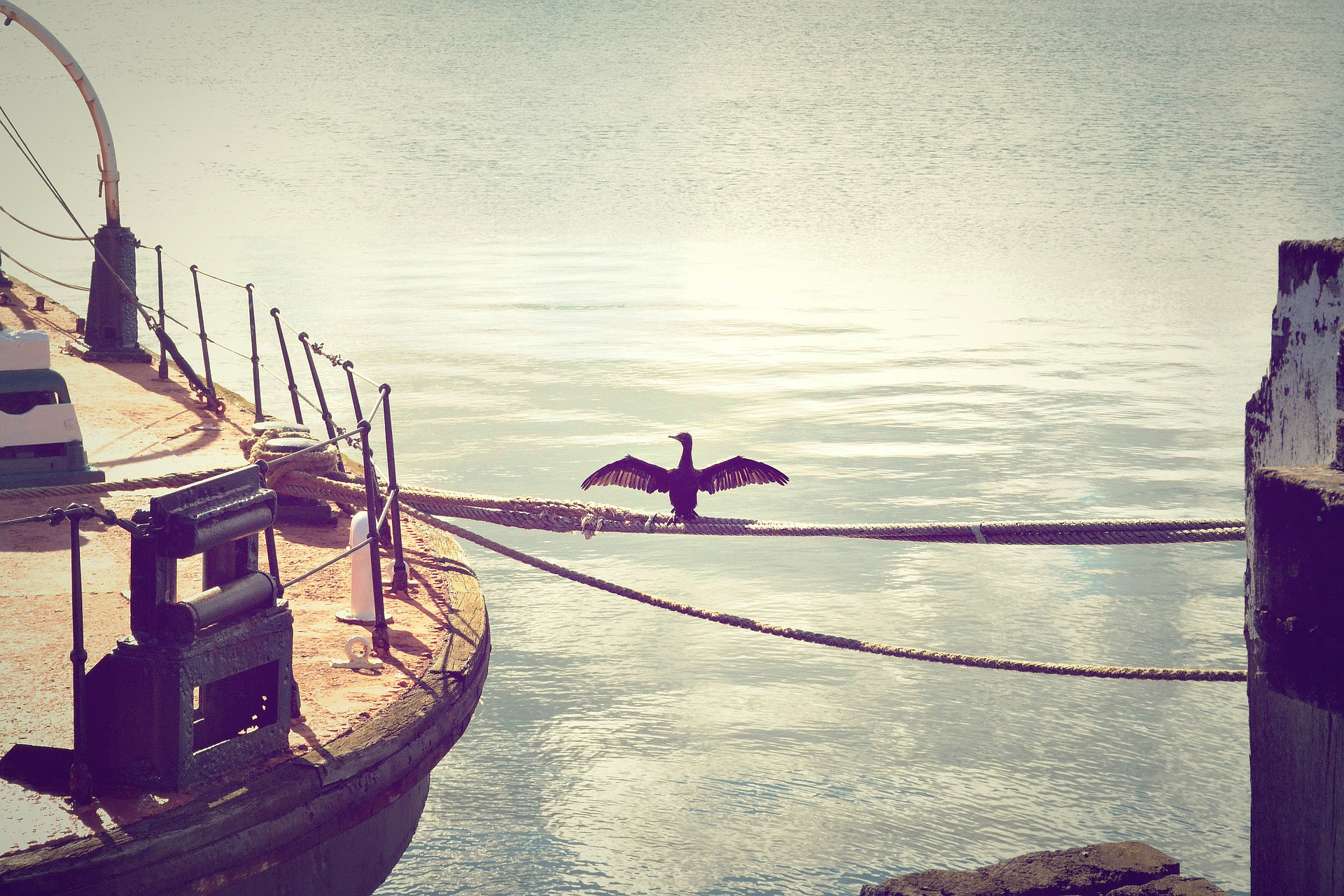 dock-336669_1920