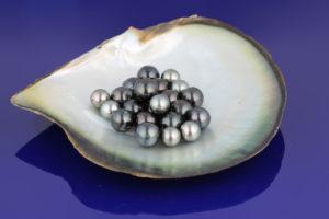Tahitské perly od Leola
