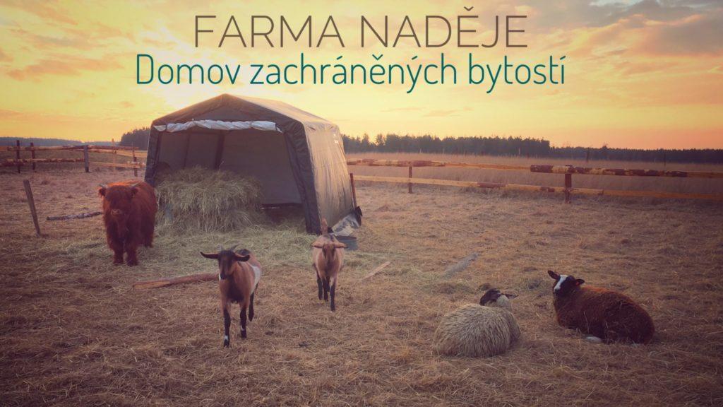 Farma a kozy